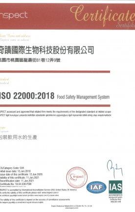 ISO-2018-2020中文版